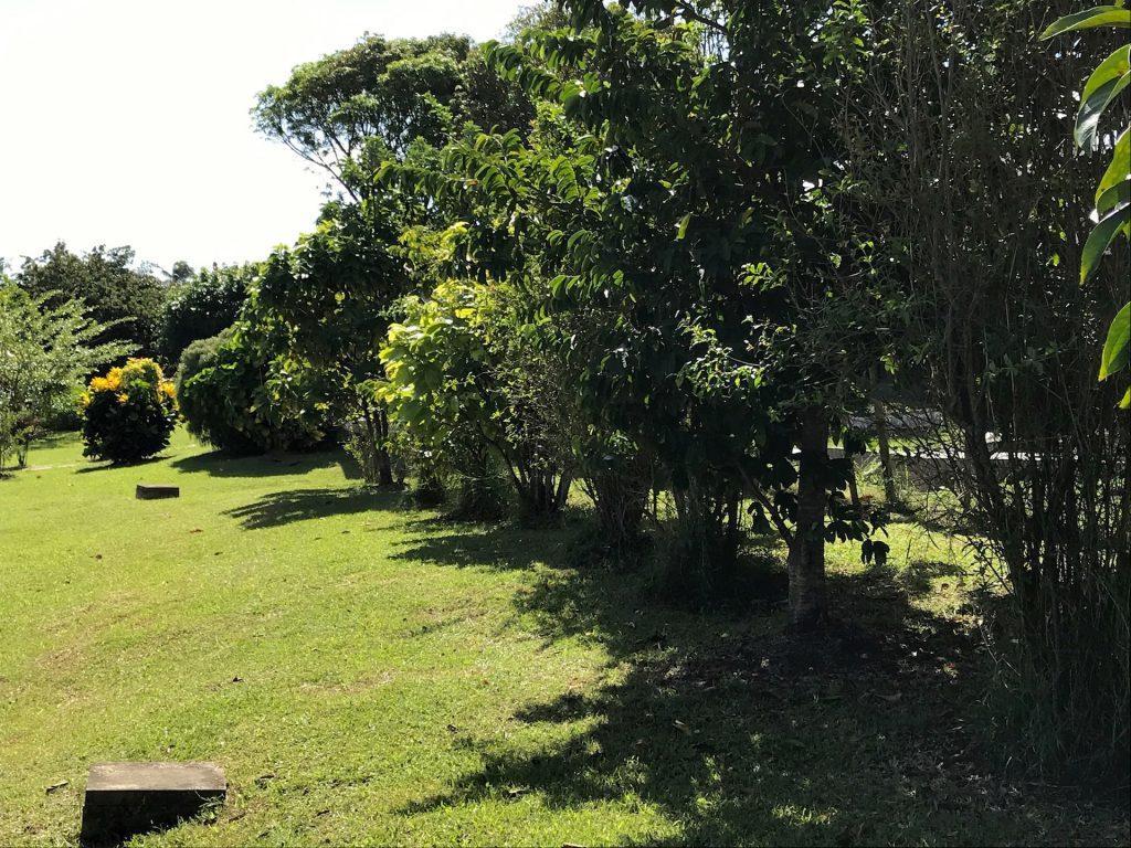 jardin Residence Elmire
